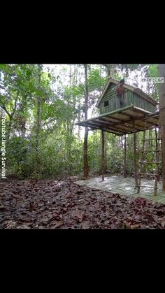 care Watch a guy make his own pool in the woods - the classic. Beste Gif, Cool Inventions, Useful Life Hacks, Architecture, Mind Blown, Fun Facts, Survival, Backyard, The Incredibles