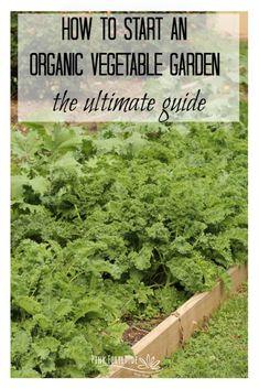 How to Start an Organic Vegetable Garden - Pink Fortitude, LLC Organic Soil, Organic Gardening, Gardening For Beginners, Gardening Tips, Starting A Vegetable Garden, Vegetable Gardening, Abundant Health, Victory Garden, Bountiful Harvest