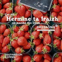 """Découvrez toutes les appropriations des acteurs du tourisme bretons dans le cadre de la campagne """"Dépaysez Vous en Bretagne"""".  Création : Destination Rennes  #DepaysezVousEnBretagne Destinations, Rennes, Frames, Rural Area, Brittany, Tourism, Travel Destinations, Viajes"""