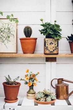 Container Gardening Vegetables, Succulents In Containers, Container Flowers, Container Plants, Vegetable Gardening, Artificial Cactus, Geranium Plant, Mini Greenhouse, Greenhouse Ideas