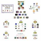 I created this Prezi to use with my Five Senses unit. It is a very useful tool that provides many valuable internet resources all together, previe. Five Senses Preschool, My Five Senses, 4th Grade Frolics, Anchor Charts, Preschool Crafts, Learning Activities, Booklet, Lesson Plans, Kindergarten