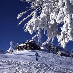 Brasov in the Romania Facts, Brasov Romania, Beautiful Winter Scenes, Visit Romania, Mountain Resort, Modern City, Winter Landscape, Luxury Travel, Travel Inspiration
