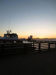 San Francisco Bay   Macadame