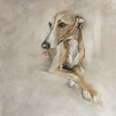 Italian greyhound 'Charly' by Julie Brunn