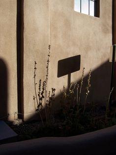 Taos shadow