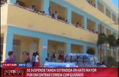 Se Suspende Tanda Extendida En Hato Mayor Por Encontrar Comida Con Gusanos #Video