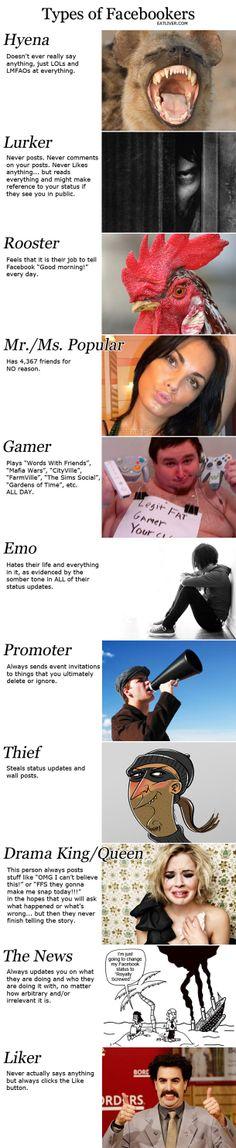 Ein kleiner Überblick über die Usertypen die uns täglich auf Facebook begegnen ;).