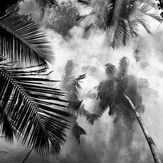 The landscape photography of Hengki Koentjoro | The Fox Is Black
