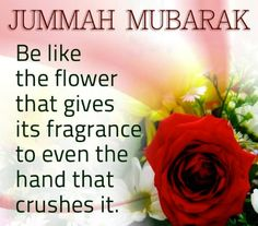 Jumma is a blessing holiday for Muslims. People send Jumma Mubarak Wishes, Jumma Mubarak SMS, Jumma Mubarak Messages, Jumma Mubarak Greetings and Quotes Images Of Jumma Mubarak, Jumma Mubarak Messages, Juma Mubarak Images, Friday Messages, Friday Wishes, Wishes Messages, Jumma Mubarak Hadees, Jumma Mubarak Quotes, Famous Christmas Quotes