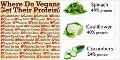 Sfatiamo il mito delle proteine