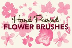 (FREE) Pressed Flowers Photoshop Brushes ~~ A set of 14 Photoshop brushes of hand pressed leaves and flowers.