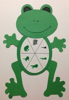 ... Life Cycles on Pinterest | Life Cycles, Butterfly Life Cycle and Frog