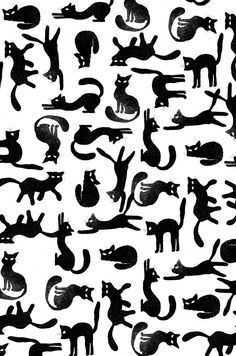 Ideas Cats Wallpaper Pattern Gatos For 2019 Crazy Cat Lady, Crazy Cats, I Love Cats, Cool Cats, Cats Wallpaper, Cat Pattern Wallpaper, Trendy Wallpaper, Wallpaper Wallpapers, Textures Patterns