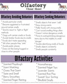 olfactory cheat sheet