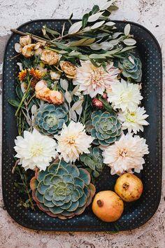 succulents + dahlias.