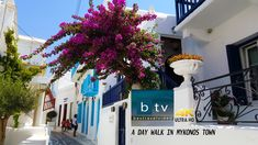 Daytime in Mykonos is great for sightseeing! Most people are still asleep from last night's parties, or are bathing on the beach. So, it is a good time to wa. Mind Puzzles, Best Greek Islands, Mykonos Town, White Houses, Bathing, Stuff To Do, Parties, Eye, Night