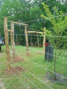 keeping deer out of the garden