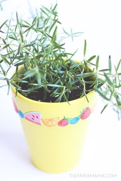 Turn a plain planter into a fun one by adding graphics with Mod Podge! Makes a great gift for a holiday - or a neighbor.