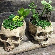 Skull Head Pot Vase Yatak odası – home accessories Skull Head, Skull Art, Casa Rock, Gothic Garden, Goth Home, Creation Art, Skull Decor, Gothic Home Decor, Vintage Gothic Decor