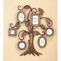 33 Best Family Tree Wall Images Decorating Ideas House