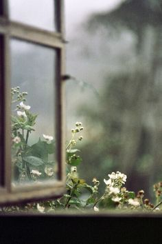 Open windows in your home.