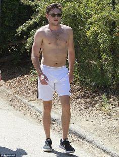 Niall Horan in Los Angeles, August 2017