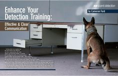 K-9 Scent Detection >> Enhance Your Detection Training: Effective & Clear Communication Search And Rescue, Pet Search, Kennel Ideas, Military Working Dogs, Gsd Dog, Dog Nose, Pet Dogs, Pets, Dog Behavior
