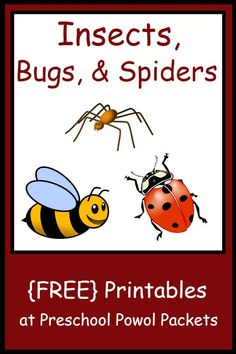 Free preschool printables!! Includes worksheets and activities, life cycles, playdough mats, letters, and much more for insect, bug, spider, ladybug, butterfly, worm, and other litter critter preschool themes! ALL FREE!!