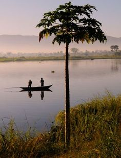 The Shire River.  I worked in Liwonde National Park for a time and spent many hours in awe of life on this river.