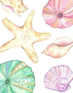 Seashells / watercolor print/ teal/light by kellybermudez on Etsy Watercolor Print, Watercolour Painting, Watercolors, Sea Art, Sea And Ocean, Animal Tattoos, Ocean Life, Sea Shells, Art Projects