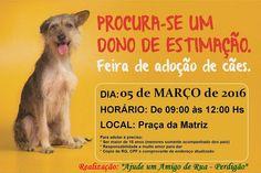 """BONDE DA BARDOT: MG: """"Ajude um amigo de rua"""" realiza campanha de adoção em Perdigão, neste sábado (05/03)"""
