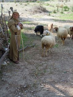 Nazareth Village - Based on solid New Testament scholarship and the most up-to-date archaeology, Nazareth Village brings to life a farm Galilean village, recreating Nazareth as it was 2,000 years ago.  The one who enters by the gate is the shepherd of the sheep. John 10:2