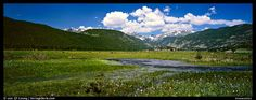 Panoramic Picture/Photo: Summer wildflowers and stream in mountain meadow. Rocky Mountain National Park