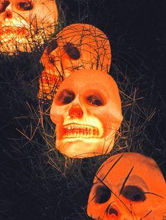 Illuminate the yard with creepy skulls...