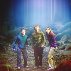 The Trio meet Grawp ~ Harry Potter and the Order of the Phoenix