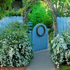 Adore the blue fence and the archway. Makes ya want to walk right through  find out where the path goes. #gardening