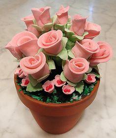 flower pot cake....