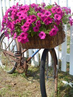bici jardin
