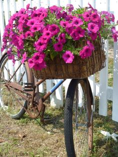Love the idea using an old bike