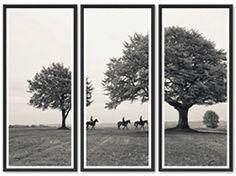 Horses Under Trees