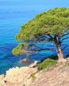 Ramatuelle, Provence-Alpes-Côte d'Azur