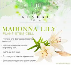 Brighter skin begins with Lira Clinical! We have boosted our brightening products with the addition of the fabulous Madonna Lily Plant Stem Cell! This illuminating PSC is in our newly reformulated Mineral Retinol Solution, Caviar Crème and in one our new products debuting at the end of the month. Check back for more daily reveals!