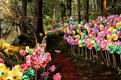 """""""I just haven't met you yet...""""        Pinwheels are placed to honor unborn children near a Buddha statue. Aomori, Japan..."""