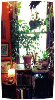 Books and plants ♡