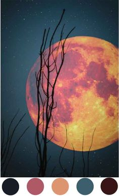 mysterious moon color story
