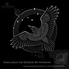 "norse mythology Celtic Knot T-Shirt by Raidho. Path to the North. ""Northern Raven"" is a beautiful Celtic knot design depicting a raven and the stars. Art Viking, Viking Symbols, Viking Raven, Rabe Tattoo, Celtic Knot Designs, Raven Art, Raven Totem, Raven Feather, Raven Wings"