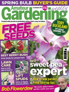 WELCOME TO AMATEUR GARDENING! Amateur Gardening is Britain's best–loved weekly gardening magazine. Nearly 200,000 people read Amateur Gardening every week! The magazine is the most influential in its field, reporting the big news stories, challenging conventional thinking, and frequently setting the agenda in the gardening world. We've lobbied the government to save allotments (AG Allotments 2000 Campaign) and flagged up the disgraceful overcrowding at the RHS Chelsea flower show, winning…