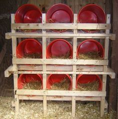 bucket nesting boxes. Fabulous!