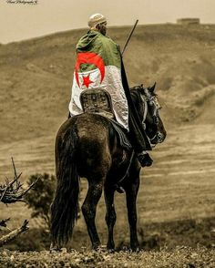 Riding Helmets, Roman, Africa, Horses, Bled, Animals, Palestine, Single Breasted, Traveling