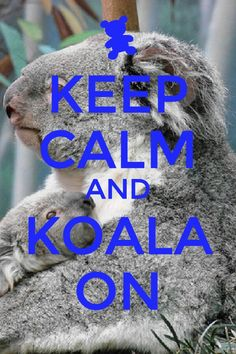 Keep calm and Koala on.